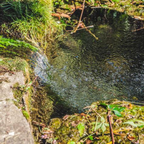Woda z podziemnych źródeł